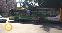 La línea 8 del autobús llegará la próxima semana al Cerro Gordo