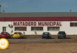 El GMS-R denuncia el cierre silencioso del Matadero Municipal
