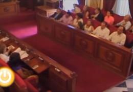 Pleno extraordinario de julio de 2010 del Ayuntamiento de Badajoz