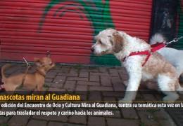 Las mascotas miran al Guadiana
