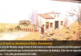 El buey y la mula no abandonan el Belén Monumental