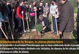 En el Día Internacional de los Bosques, los jóvenes plantan futuro