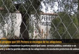 Cabezas propone que SOS Perrera se encargue de las adopciones