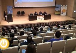 Las renovables y la eficiencia como sector estratégico de la región