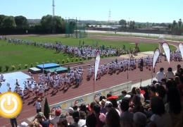 Clausuradas con éxito las Escuelas Deportivas Municipales