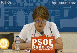 El PSOE pide mejoras medioambientales para la ciudad