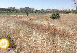 El Ayuntamiento controlará la urbanización del solar junto al Juancho Pérez