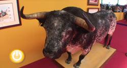 Inaugurada en IFEBA EcuExtre, la I Feria del Toro y el Caballo
