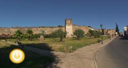 Fragoso pide un proyecto integral y no uno parcial para rehabilitar la Alcazaba