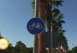 El Delegado de Tráfico afirma que el servicio de alquiler de bicicletas si está regulado