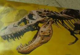 Los dinosaurios llegan a Badajoz con Dinopétrea