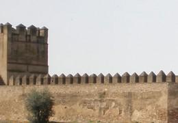 IU considera agresiva la rehabilitación prevista en la Alcazaba