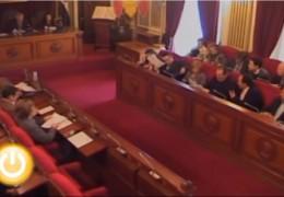 Pleno extraordinario de marzo de 2010 del Ayuntamiento de Badajoz
