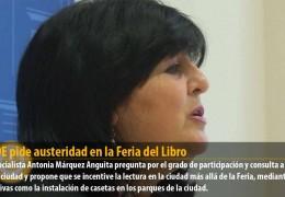 El PSOE pide austeridad en la Feria del Libro
