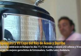 XX Campeonato y VII Copa del Rey de Acoso y Derribo