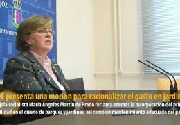 El PSOE presenta una moción para racionalizar el gasto en jardinería