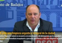 El PSOE pide una limpieza urgente e integral de la ciudad