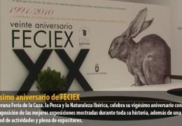Vigésimo aniversario de FECIEX
