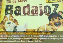 Vuelve la Exposición Internacional Canina de Badajoz