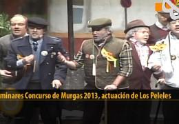 Actuación  de Los Peleles (Preliminares 2013)