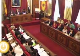 Pleno ordinario de junio de 2013 del Ayuntamiento de Badajoz
