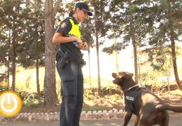 Clausurado el Curso de la Unidad Canina de la Policía Local