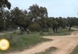 El parque de Tres Arroyos celebra una jornada de puertas abiertas