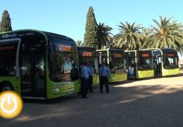 La ciudad cuenta con cinco nuevos autobuses