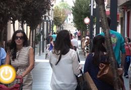 El alcalde rechaza la reducción de días de apertura de festivos comerciales