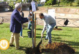 Badajoz celebra el Día de la Cooperación Europea