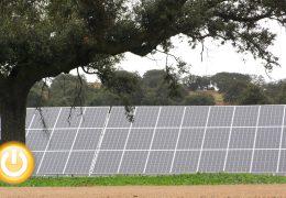Bruc y Solarpack inauguran en Alvarado una planta fotovoltaica de 100 MW