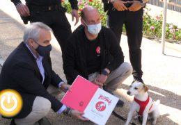 Rueda de prensa Alcalde- Recepción a Pipper, perro influencer