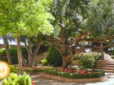 Los Jardines de la Galera abrirán al público en el mes de junio